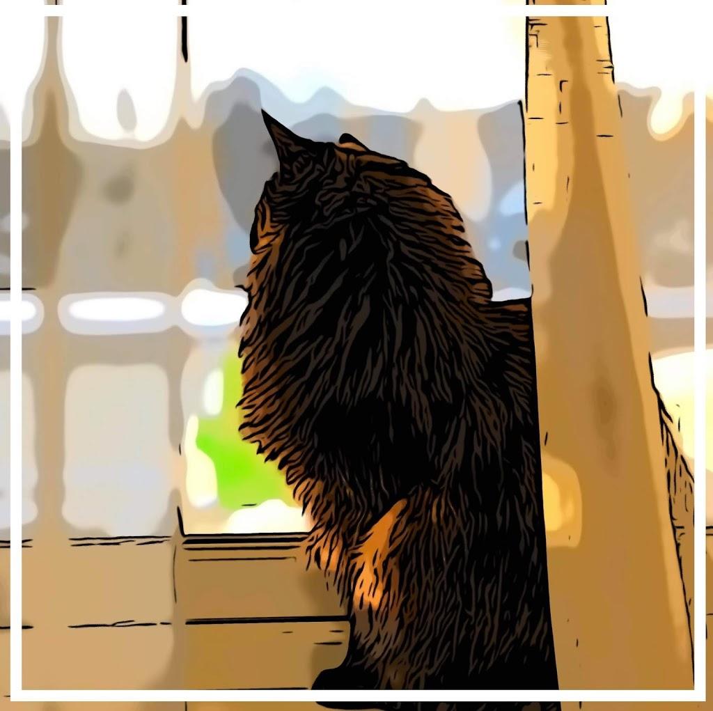 Bajka o kotku Kogutku i nieszczęśliwym ptaszku